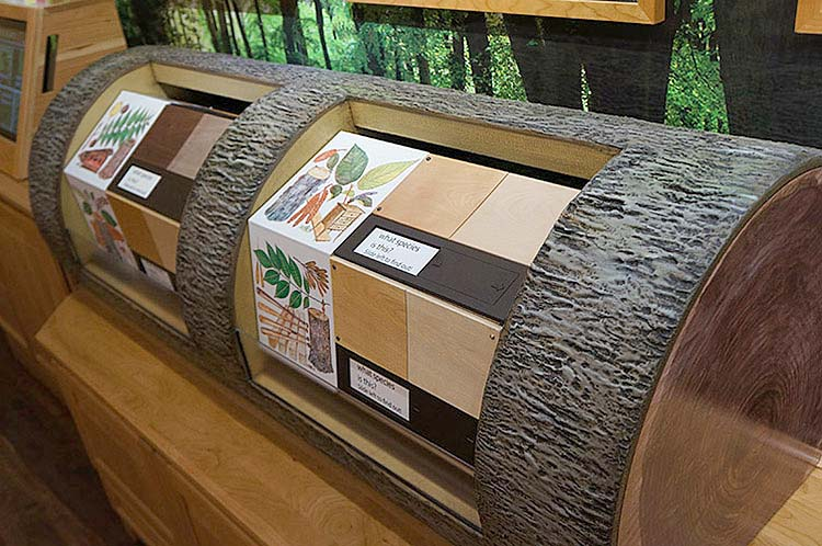 Log Game Display